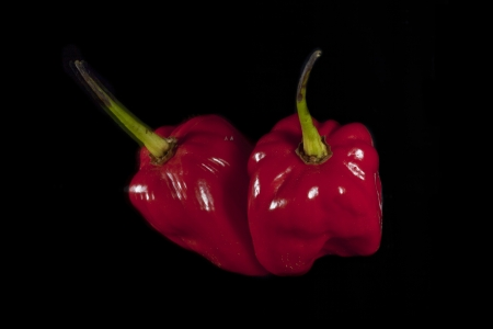 weight reduction plan: Two habanero peppers laid over a black background