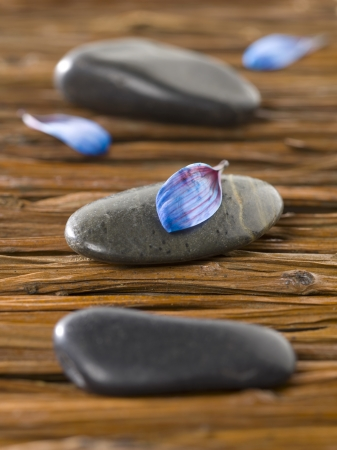 Closeup shot of spa stones with blue petals lying on a weave wooden background Stock Photo - 17258315