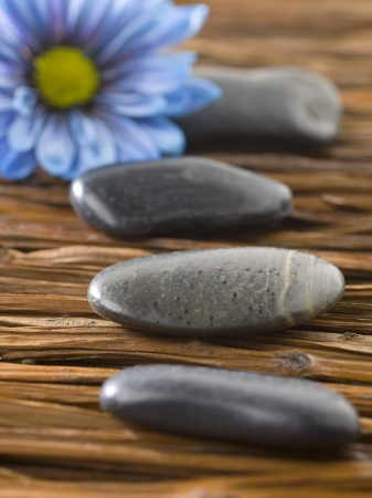 Close up image of spa stones with blue flower Stock Photo - 17258518