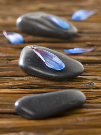 magnetic stones: Close up image of spa stones with blue petal Stock Photo