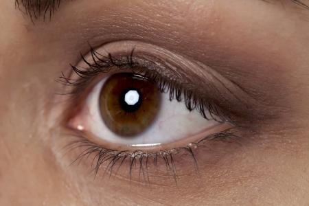 ojos marrones: Cerrado hasta marrón del ojo de una mujer