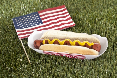 Horizontal image of American hotdog sandwich on a grass photo