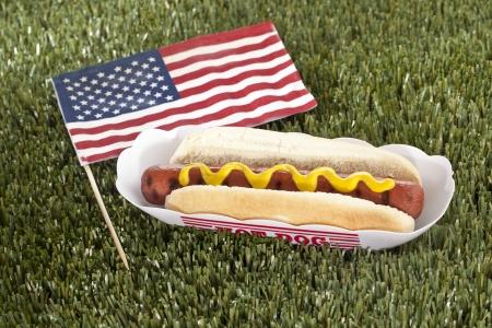 Imagen horizontal de s�ndwich hot dog americano en una hierba Foto de archivo - 17302308