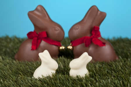 A pair of chocolate and milk easter bunnies sitting on green grassland Stock Photo - 17302022