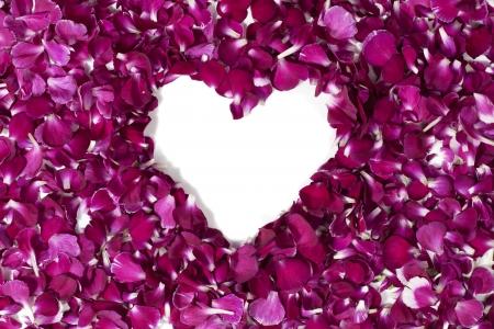 overhead shot: Overhead shot of flower petals arranged to form a heart shape.