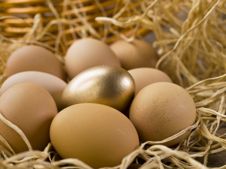 Close-up shot of a golden egg surrounded with brown eggs. photo