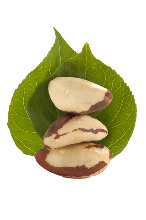 Tasty brazil nuts and green leaves arranged over a white background