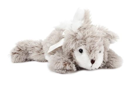stuff toy: Close up image of dog stuff toy against white background