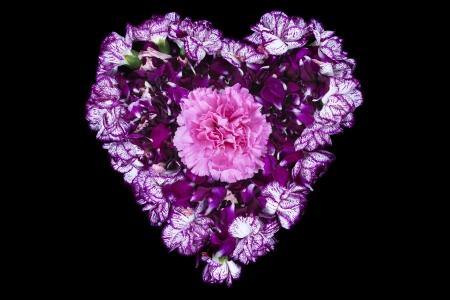 overhead shot: Overhead shot of pink flower forming heart shape symbol on dark background.