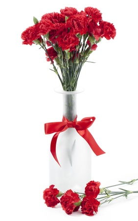 Vertical image of a fresh red carnation on a flower vase isolated on a white background photo