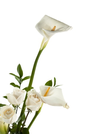 arum flower: White calla lilies and white roses in a cropped image Stock Photo