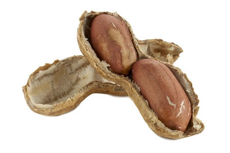 pygmy nuts: Close-up image of a cracked earthnuts isolated on a white surface