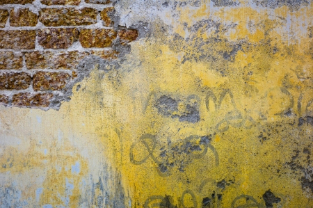 A brick and plastered wall in Kochi, India.