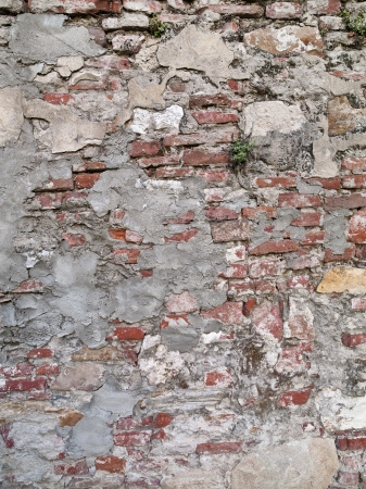 New world cement attempts to plaster the heavily worn and decaying Tuscany wall. Stock Photo - 17354576