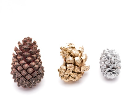 Plain, gold and silver pinecones