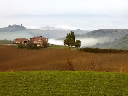 Layers of green and low lying fog in Tuscany photo