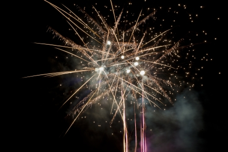 outwards: Fireworks streaking into the sky and exploding outwards, resembling palm trees