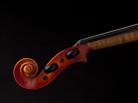 Close up image of violin peg box against dark background