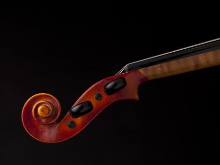 laquered: Close up immagine di box violino peg su sfondo scuro