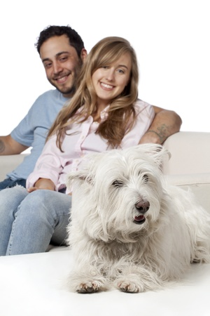 Charming Couple sitting on the couch with pet dog Stock Photo - 17377395