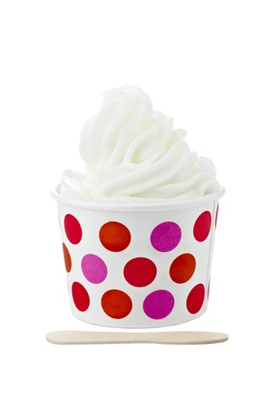 Cup of Vanilla sundae with ice cream stick isolated in a white background photo