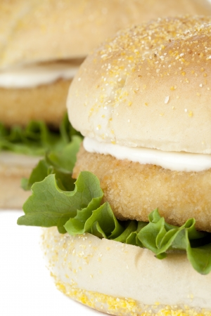 Macro image of chicken hamburgers isolated on a white background photo