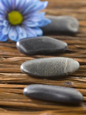 magnetic stones: Close up image of spa stones with blue flower