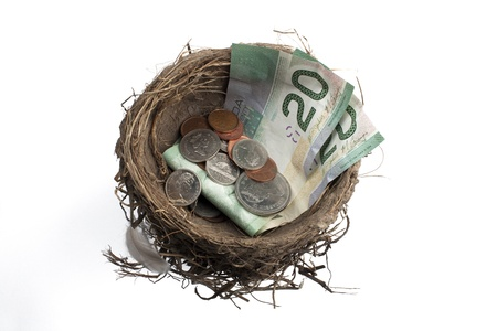Detailed shot of bird's nest with paper currency notes and coins over white background. Stock Photo - 17496184