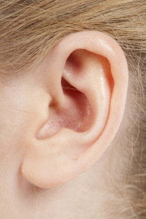 Close up image of female ear photo