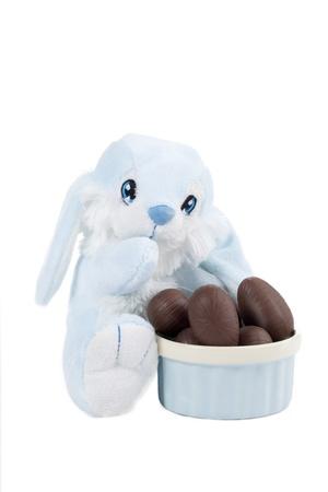 oeufs en chocolat: Une image d'un lapin et oeufs de P�ques au chocolat bol sur une �troite image isol� sur Banque d'images