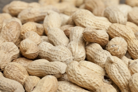 earthnuts: Close up image of a pile of dry peanuts