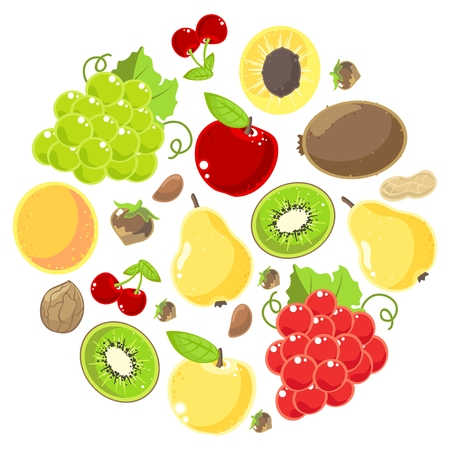 Set of fruits and nuts on a white background Vector