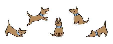 dogs sitting: Conjunto de im�genes de un perro