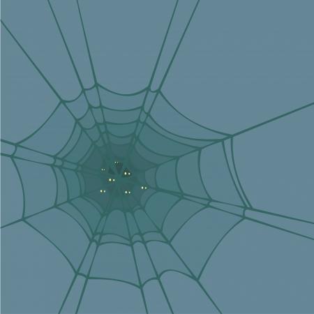 springe: Spider web Illustration