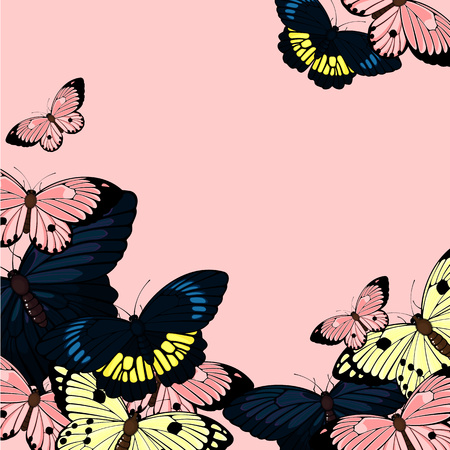 cartoon summer: Beautiful card with butterflies, with a place for your text