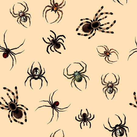 seamless pattern: Seamless pattern with spiders Illustration