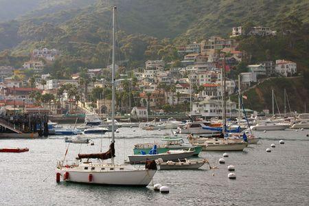 catalina: Avalon Bay con Barche a Santa Catalina Island