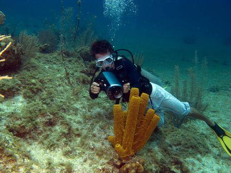 brac: Underwater Videographer shooting a Tube Sponge in Cayman Brac Stock Photo