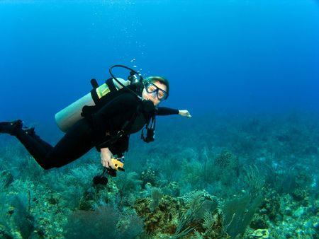 Horizontale Scuba Diver met kopiëren Space op een Caribisch Reef