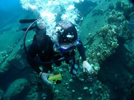 Scuba Diving on a sunken Wharf in Maui Hawaii photo