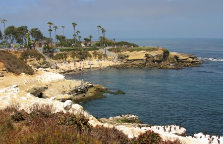 La Jolla Cove in San Diego during Summer photo