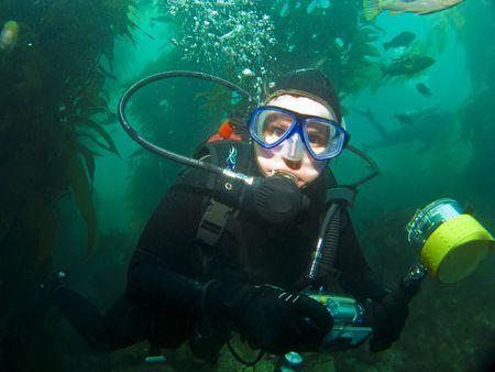 Close-Up Diver in het zeewier in Catalina