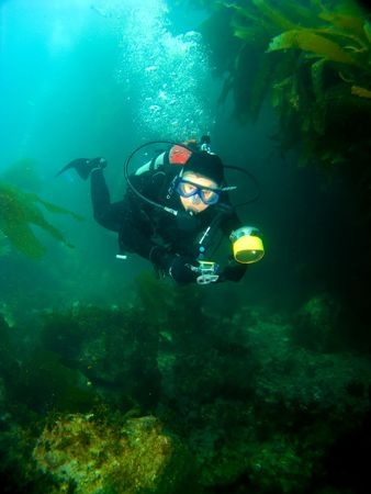 Female Scuba Diver swimming through the Kelp with a Camera in Catalina Stock Photo - 4863248