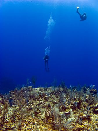 brac: Divers going off the wall in Cayman Brac Stock Photo