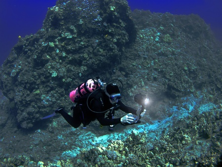 kona: Scuba Diver Photographing A Hawaiian Reef in Kona