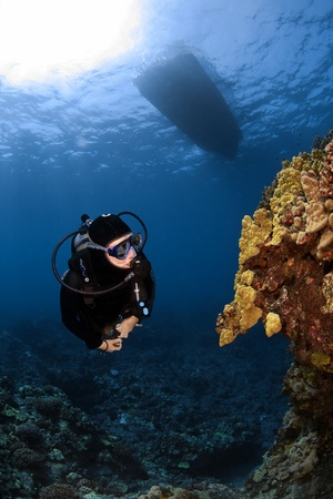 Diver checking out some unusual Coral formations in South Kona Hawaii photo