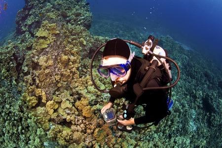 kona: Looking Down on Diver in Kona Hawaii