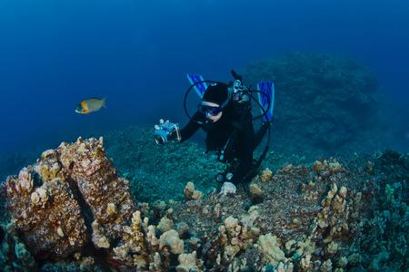 Scuba Diver fotograferen van een Reef in Hawaii Stockfoto