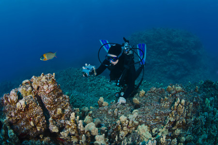 Scuba Diver photographing a Reef in Hawaii
