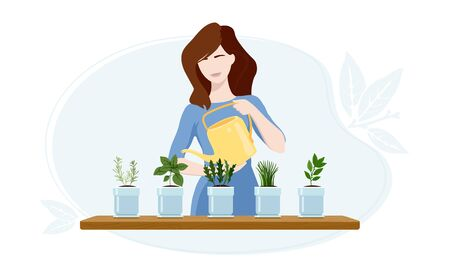 Woman watering arugula, bay leaf, chives, oregano and rosemary plants at her greenhouse.